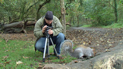 filming squirrel